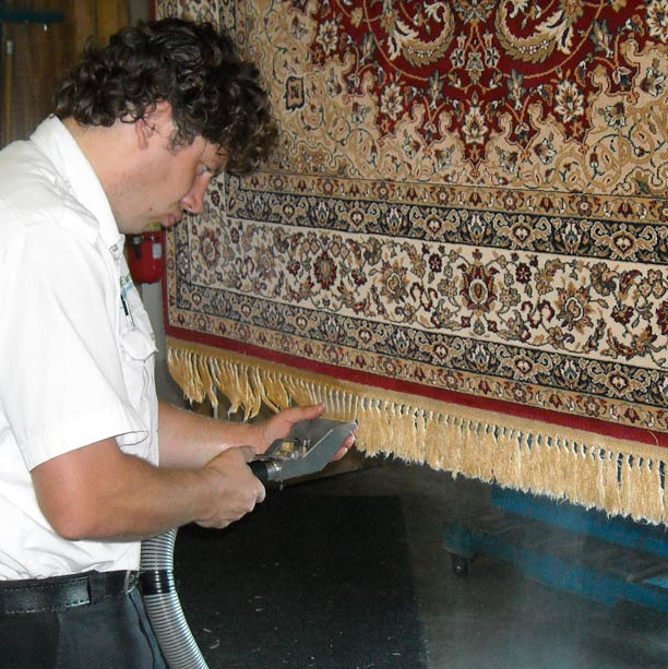 Area rug being cleaned by Green Earth employee.